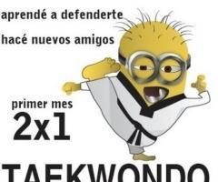 Taekwondo Olimpico Paternal
